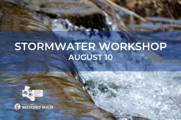 Join us August 10 for Stormwater Workshop
