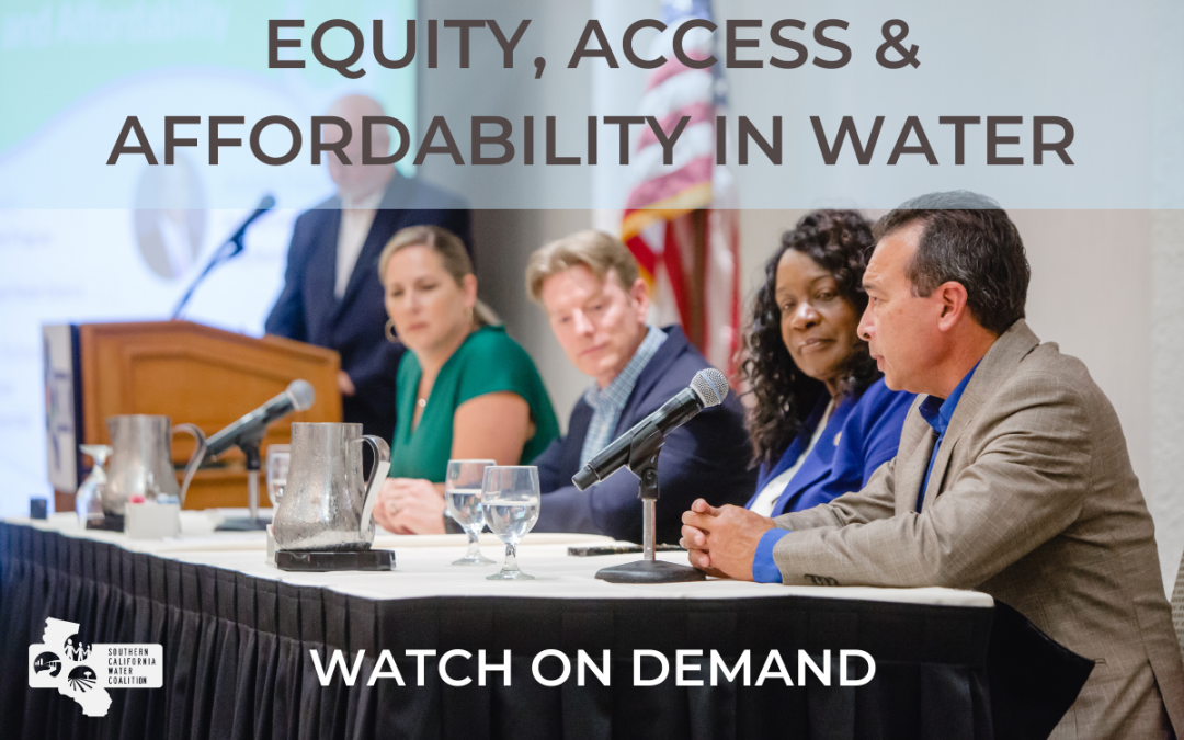 Watch On Demand: Equity, Access and Affordability in Water