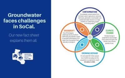 All About Groundwater Fact Sheet