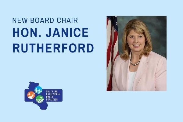 A photo of a woman with the text New Board Chair is the Hon. Janice Rutherford