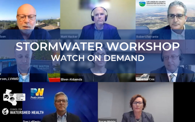 Watch Stormwater Workshop 2021 Webinar Video On Demand